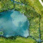 Drohnenaufnahme eines Sees in einer grünen Wiese